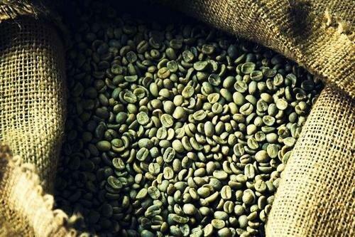 как правильно заваривать зеленый кофе